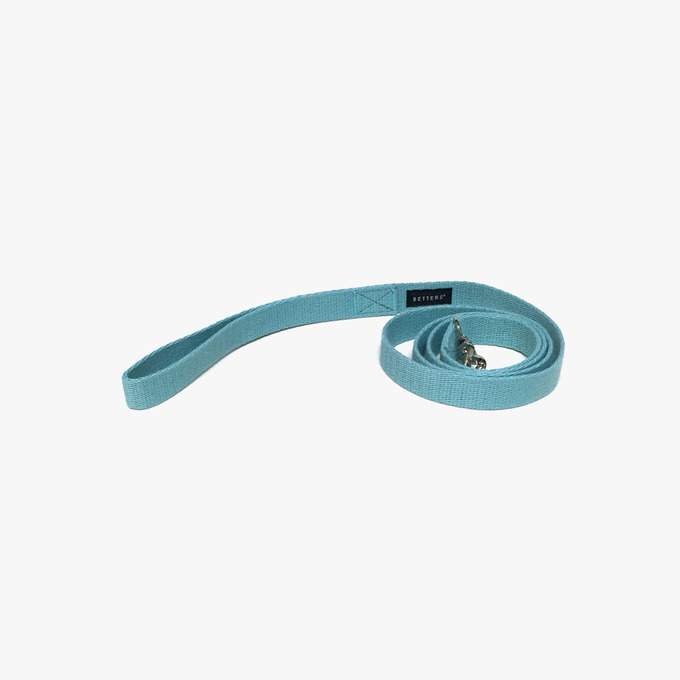 Color Leash (Mint)