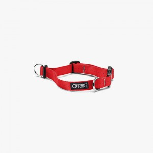 EVERYDAY COLLAR SMALL - RED