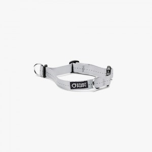 EVERYDAY COLLAR SMALL - SILVER