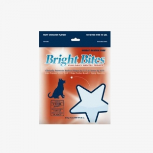 Bright Bites CINNAMON 12EA
