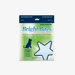 Bright Bites SPEARMINT 12EA
