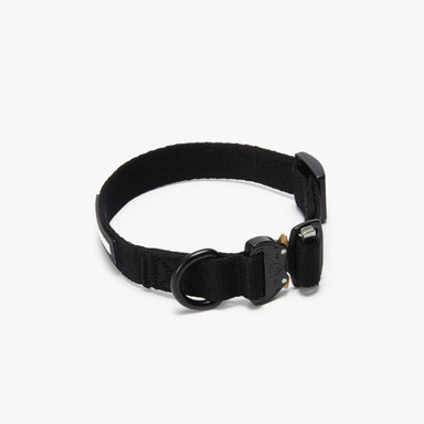 Cobra Buckle Collar (Black)