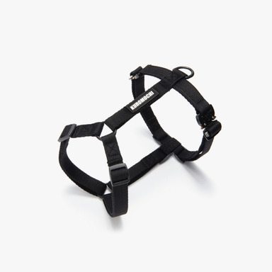 Cobra Buckle Harness (Black)