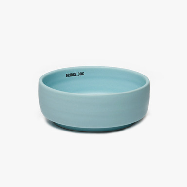 Bridge Basic Bowl (Mint)