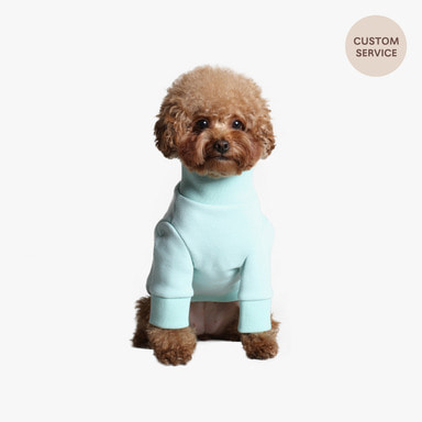 Name Turtleneck (Mint)