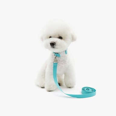 Neck Collar + Lead (Mint)