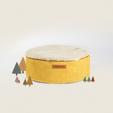 Bean Bag Jacket (Golden Yellow)